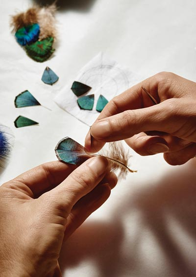 - Working withLady Amherst's pheasant feathers