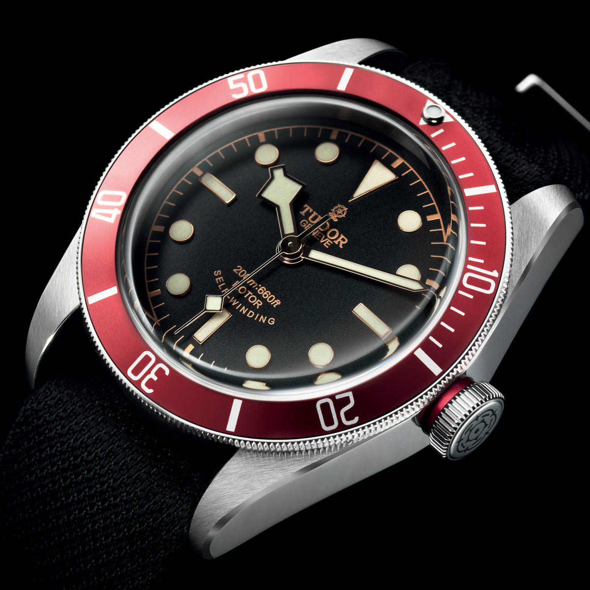 The Watch Quote: Photo - Tudor Heritage Black Bay