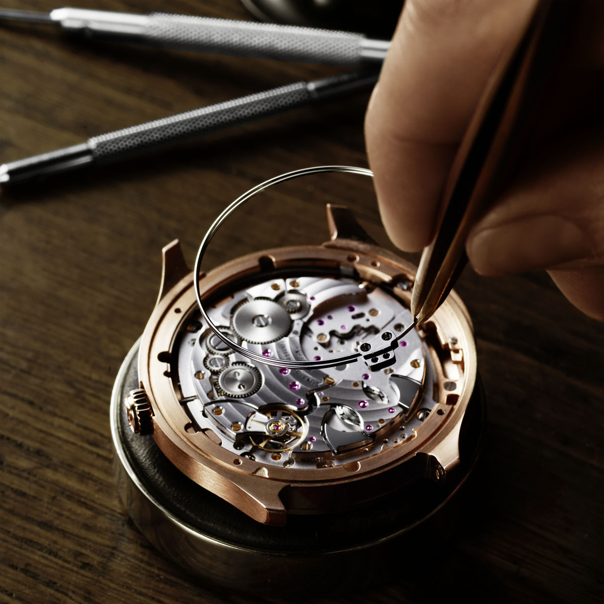 The Watch Quote: Photo - Piaget Emperador Coussin Ultra-Thin Minute Repeater