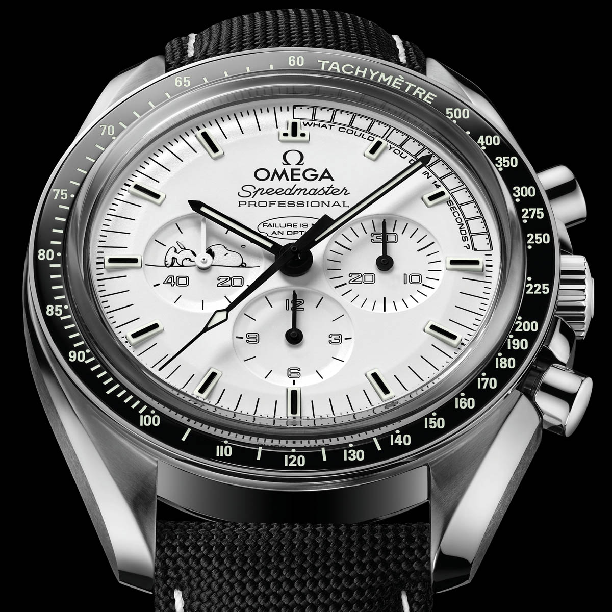 La Cote des Montres : Photo - Omega Speedmaster Apollo 13 Silver Snoopy Award