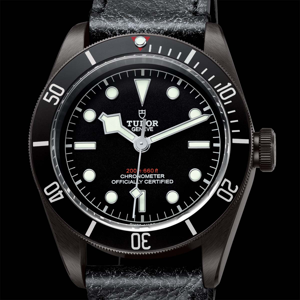 La Cote des Montres : Photo - Tudor Heritage Black Bay Dark