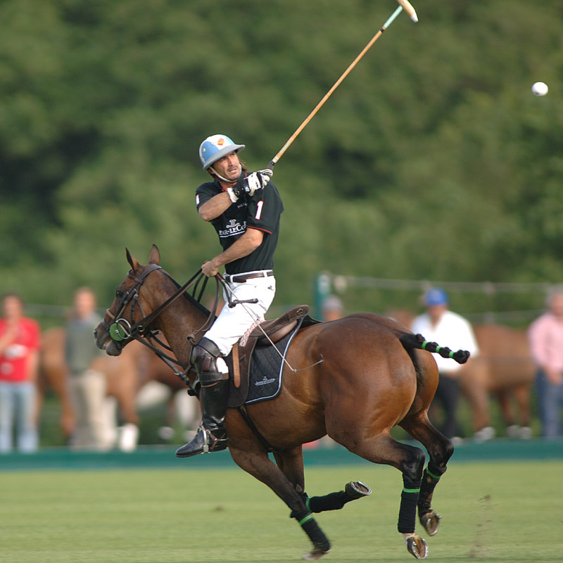 The Watch Quote: Photo - Jaeger LeCoultre winner of polo